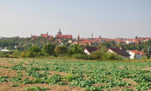 Zdjecie POLSKA / kujawsko-pomorskie / Chełmno / Chełmno