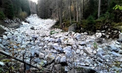 Zdjecie POLSKA / Tatry / Dolina Suchej Wody / kamienna rzeka