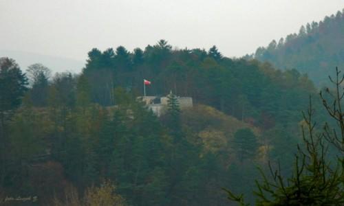POLSKA / woj.małopolskie. / Muszyna. / Ruiny zamku gotyckiego w Muszynie.