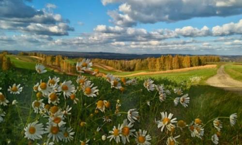 Zdjecie POLSKA / małopolska / spytkowice / kolorowa jesień u podnóża Beskidów