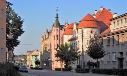 Zdjecie POLSKA / Dolny Śląsk / Jawor / można polubić od zaraz:)