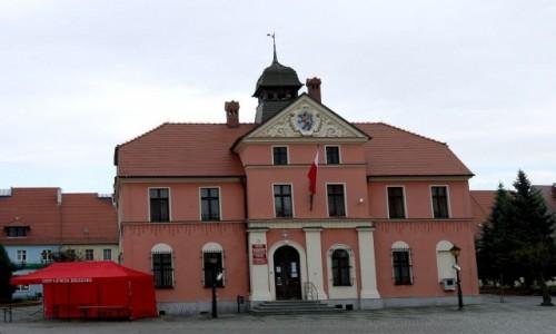 Zdjecie POLSKA / opolskie / Lewin Brzeski / Ratusz w rynku