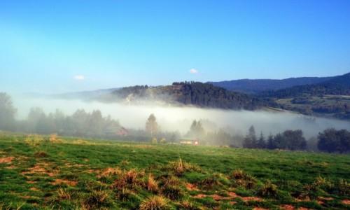 Zdjecie POLSKA / Małopolska / Krośnica / Poranne mgły