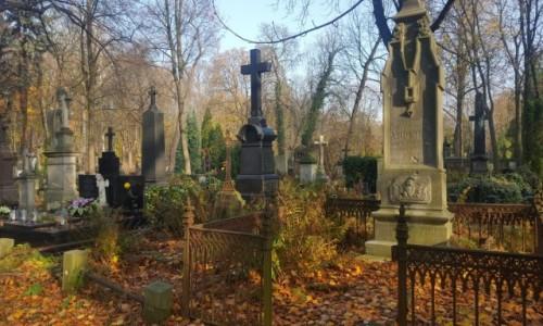Zdjecie POLSKA / Warszawa / Cmentarz ewangelicko-augsburski / I tu przyszła jesień