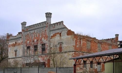 Zdjecie POLSKA / opolskie / Rozwadza / Ruina pałacu