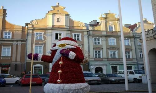 Zdjecie POLSKA / opolskie / Opole / Kamieniczki w rynku