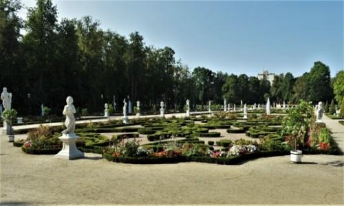 Zdjecie POLSKA / Podlasie / Białystok / Białystok, park przypałacowy