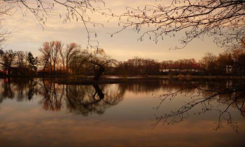 Zdjęcie POLSKA / Mazowsze / Park w Nieborowie / przedwiosnie o zachodzie słonca