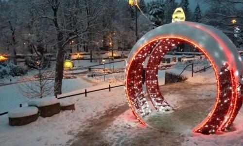 Zdjecie POLSKA / Lądek Zdrój  / Lądek Zdrój / Park zdrojowy zimą