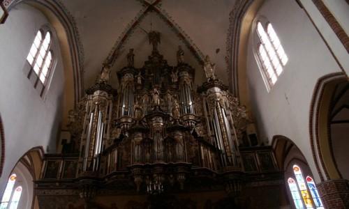 Zdjęcie POLSKA / Województwo Zachodniopomorskie / Kamień Pomorski / katedra - organy