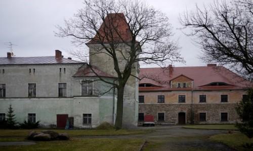 Zdjecie POLSKA / dolnoślaskie / Łagiewniki / Pałac od strony parku