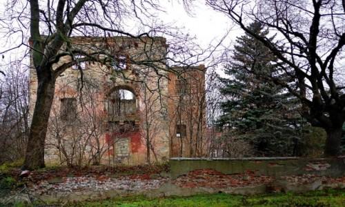 Zdjecie POLSKA / dolnośląskie / Białobrzezie / Ruina dworu, w deszczu.