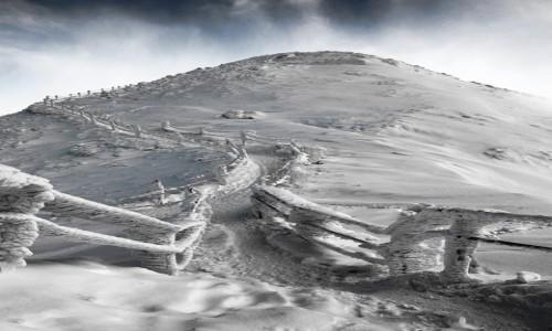 POLSKA / Karkonosze / Śnieżka / Cała w śnieżku