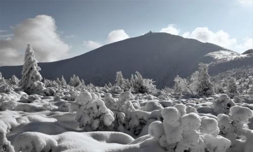 Zdjecie POLSKA / Karkonosze / . / Okolice Śnieżki