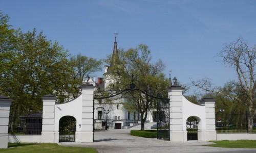 Zdjecie POLSKA / wielkopolskie / Tarce / Pałac