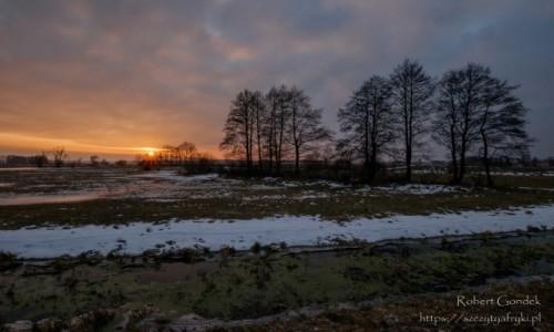 Zdjecie POLSKA / Podlasie / Podlasie / Zimowy zachód słońca na Podlasiu