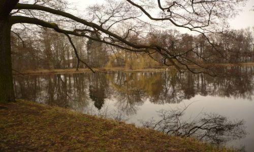 Zdjęcie POLSKA / Mazowsze / Park / ach to Mazowsze...
