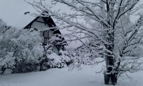 Zdjecie POLSKA / opolskie / Nad Odrą / Zima w Opolu