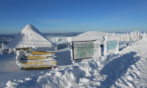 Zdjecie POLSKA / karkonosze / masyw śnieżnika / pod schroniskiem przy śnieżniku