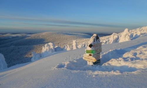 Zdjecie POLSKA / karkonosze / masyw śnieżnika / masy śniegu na szlaku ;)