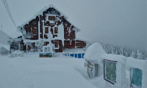 Zdjecie POLSKA / karkonosze / masyw śnieżnika / Klimatyczne schronisko