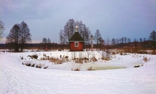 Zdjecie POLSKA / podlaskie / Białowieża / Zimowe Podlasie. Skansen w Białowieży