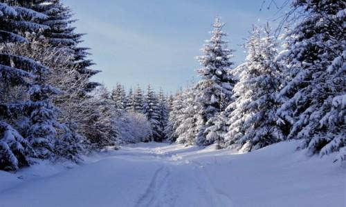 Zdjecie POLSKA / Dolny Śląsk / Rudawski Park Krajobrazowy / można zimę lubić, można i pokochać...