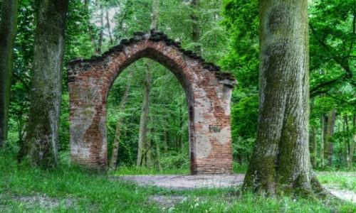 Zdjecie POLSKA / Łódzkie / Arkadia / W Arkadyjskich ogrodach