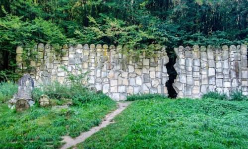 POLSKA / lubelskie / Kazimierz Dolny / Ściana Płaczu w Czerniawach