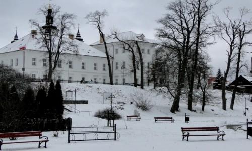 Zdjecie POLSKA / Podlasie / Supraśl / Jeszcze trochę podlaskiej zimy.