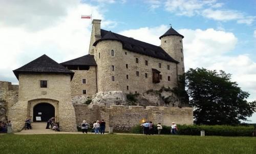 Zdjecie POLSKA / śląskie / Niegowa / Zamek Bobolice