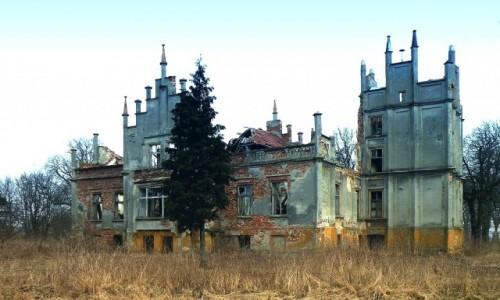 Zdjęcie POLSKA / opolskie / Rożnów / Ruina pałacu