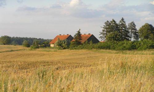 Zdjęcie POLSKA / mazury / pola pod Nidzicą / brama Mazur