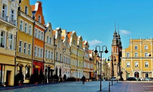 Zdjecie POLSKA / województwo opolskie / Opole / Rynek w Opolu