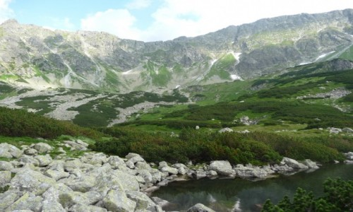 Zdjecie POLSKA / - / Tatry / Dolina Pięciu Stawów