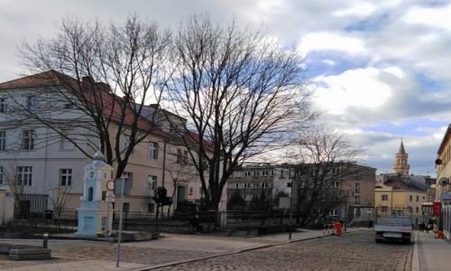 Zdjecie POLSKA / opolskie / Opole / Uliczka z ratuszem w tle