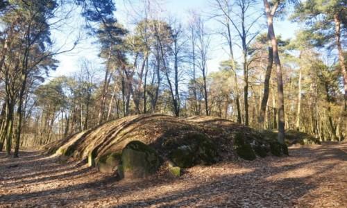 Zdjęcie POLSKA / kujawsko-pomorskie / Wietrzychowice / Z serii Polska megalityczna: Wietrzychowice, grobowce kujawskie sprzed 6000 lat