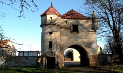 POLSKA / opolskie / Biała Nyska / Brama zamkowa od strony parku