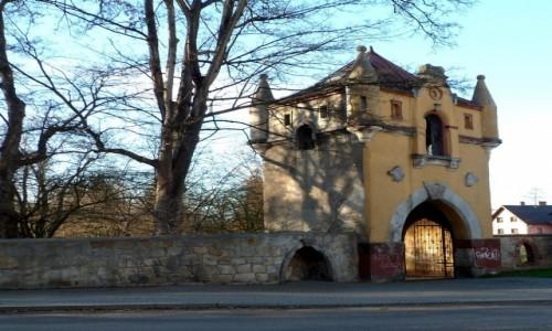 Zdjecie POLSKA / opolskie / Biała Nyska / Brama zamkowa od strony ulicy