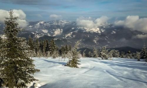 Zdjęcie POLSKA / Beskid Śląski / Skrzyczne / a zima trzyma...