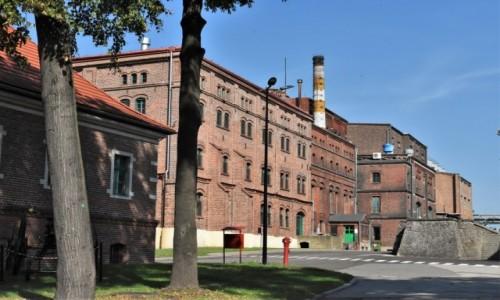 Zdjęcie POLSKA / Śląsk / Tychy / Tychy, browar