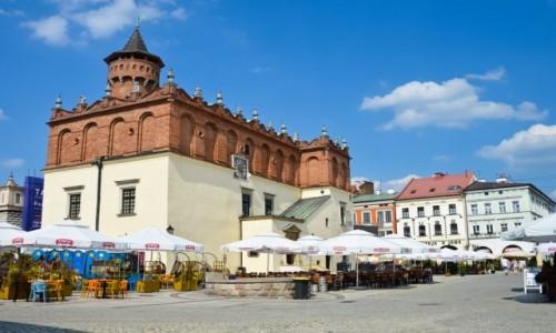 Zdjecie POLSKA / Małopolska / Tarnów / W Tarnowie