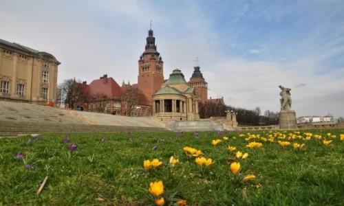 POLSKA / zachodniopomorskie / Szczecin / W Szczecinie już wiosna :)