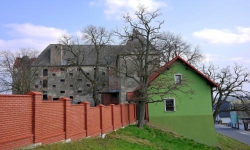 POLSKA / opolskie / Ziemnice Małe / Spirzch zamek