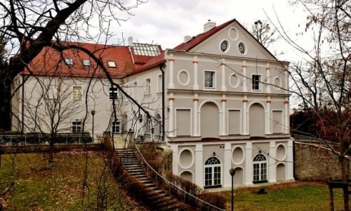 Zdjecie POLSKA / województwo opolskie / Rogów Opolski / Zamek/pałac/ w Rogowie