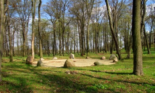 Zdjecie POLSKA / Przedgórze Iłżeckie / Chlewiska / W kamiennym kręgu