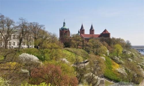 Zdjęcie POLSKA / mazowieckie / Płock / Wzgórze Tumskie w Płocku wiosenną porą