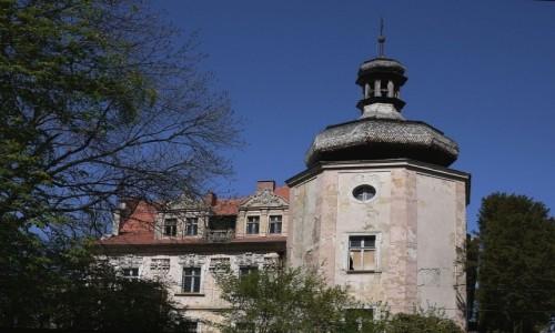 POLSKA / opolskie / Turawa / Pałac od strony wieży.