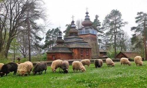 Zdjęcie POLSKA / podkarpackie / Sanok / Podkarpackie klimaty ;)