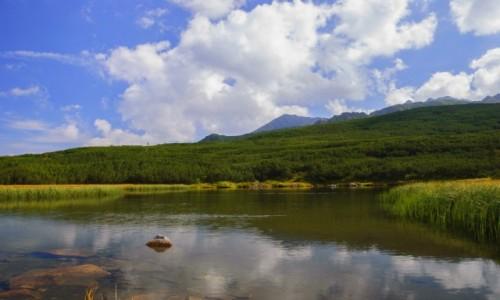 Zdjecie POLSKA / TATRY / zachodnia część Doliny Gąsienicowej / jezioro Kurtkowiec